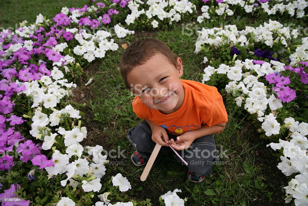 boy with flowers royalty-free stock photo