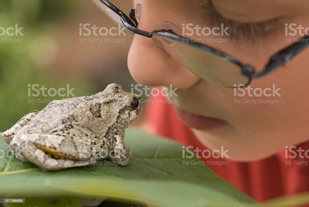 Boy With Glasses Looking At Frog on Leaf Outside stock photo