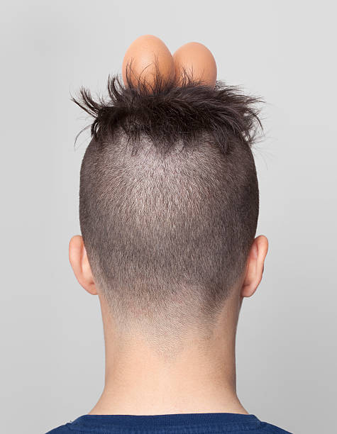Boy with hair in nest shape and two eggs Boy with hair in nest shape and two eggs. shaved head stock pictures, royalty-free photos & images