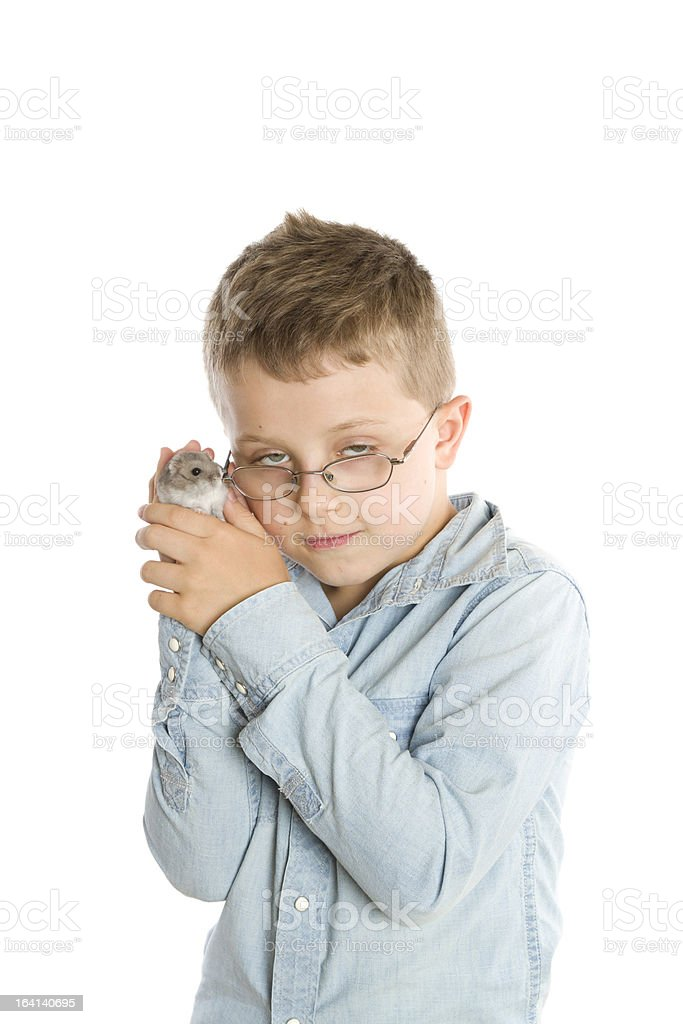 boy with hamster stock photo
