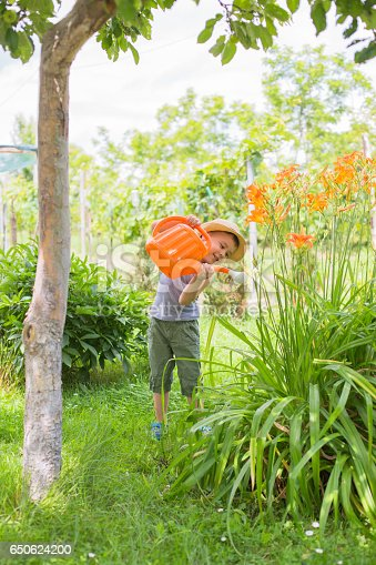 Boy watering flowers in summer garden on sunny day