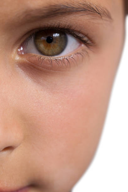 Hazel Eye Makeup And Eye Shadow For: Royalty Free Hazel Eyes Pictures, Images And Stock Photos