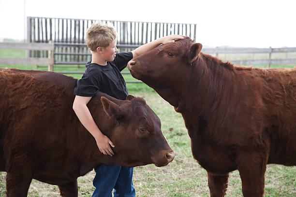 Junge mit seiner 4-H Waden – Foto