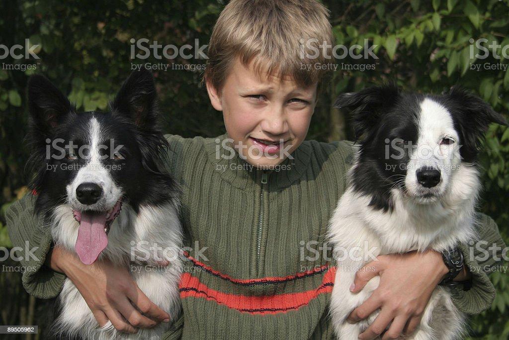 Junge mit seinem Bordercollies Lizenzfreies stock-foto