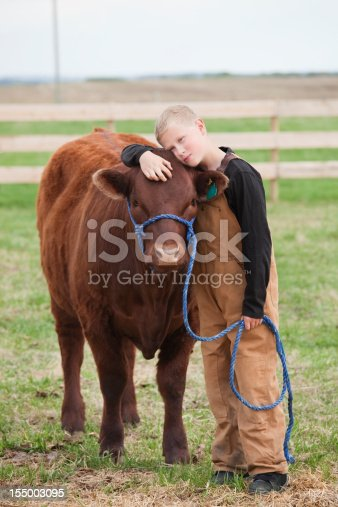 istock Boy with his Calf 155003095