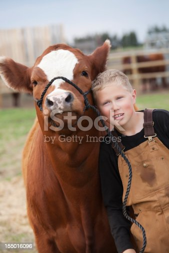 istock Boy with his Calf 155016096