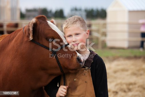istock Boy with his Calf 168502981