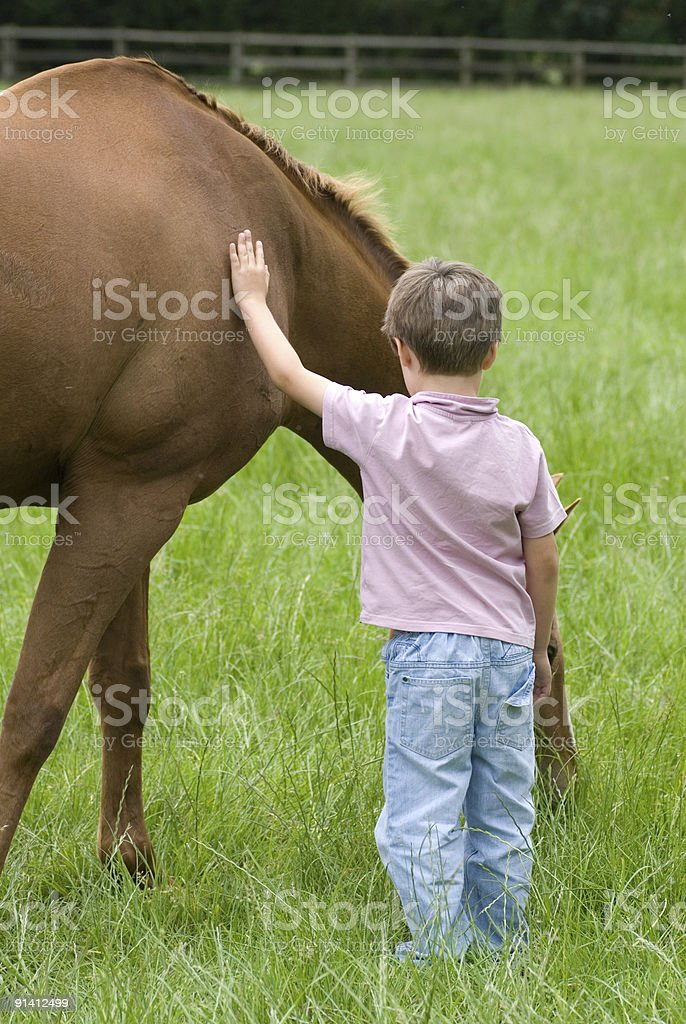Boy with horse royalty-free stock photo