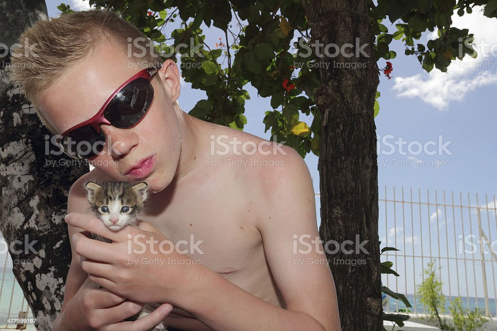boy with kitten stock photo