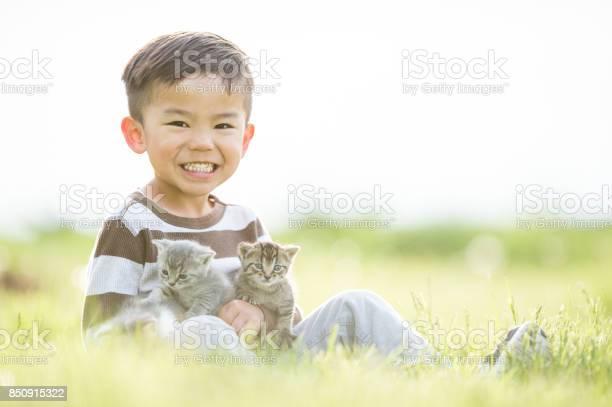 Boy with kittens picture id850915322?b=1&k=6&m=850915322&s=612x612&h=w6gw4dyc4mvgbl6mt weyawvwo uxjtkq5elpkzrytm=