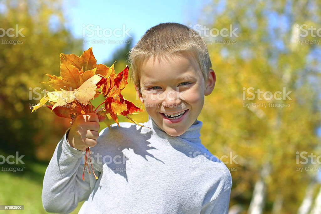 boy with leafs royalty-free stock photo