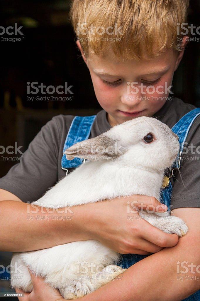 Boy with pet rabbit stock photo
