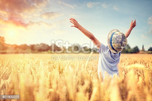 istock Boy with raised arms in wheat field in summer watching sunset 821800222