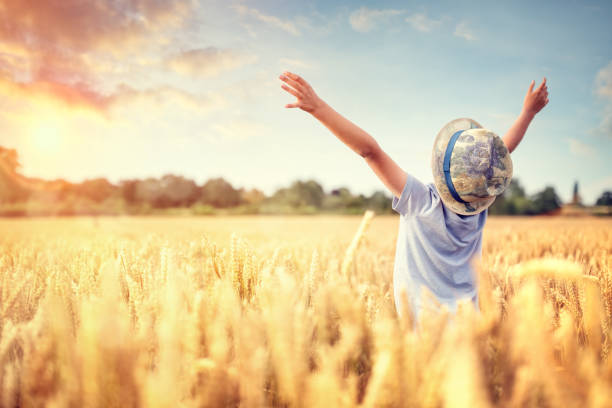 boy with raised arms in wheat field in summer watching sunset - praise and worship stock photos and pictures