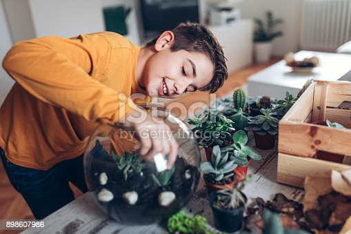 Photo of boy making terrarium at home