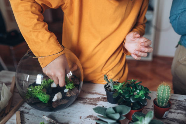 Boy with terrarium at home stock photo