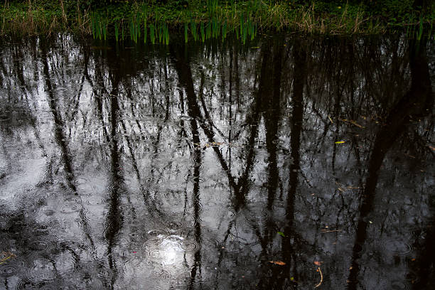 Boyne Canal reflections and ripples in the rain stock photo