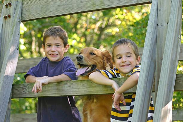Boys and Dog stock photo