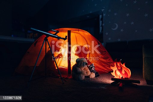 Two brothers camp inside their home due to the coronavirus restrictions and quarantine. They have pitched a tent along with their stuffed animal friends and have a fake campfire next to their telescope. They are making the best of their situation and long to return to the outdoors.