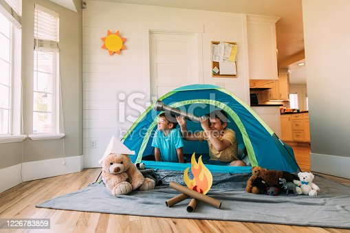 Two brothers camp inside their home due to the coronavirus restrictions and quarantine. They have pitched a tent along with their stuffed animal friends and have a fake campfire next to their tent. They are searching the skies for stars and dreams.