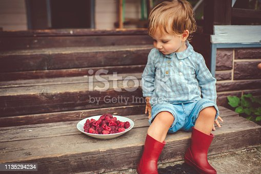 Cute little boy is about to try raspberry for the first time