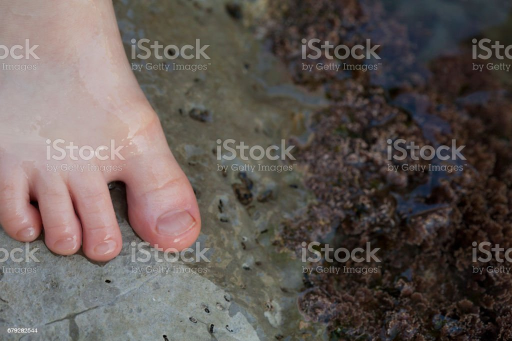 Boy's Foot Wet While Playing Near Tidal Pools stock photo