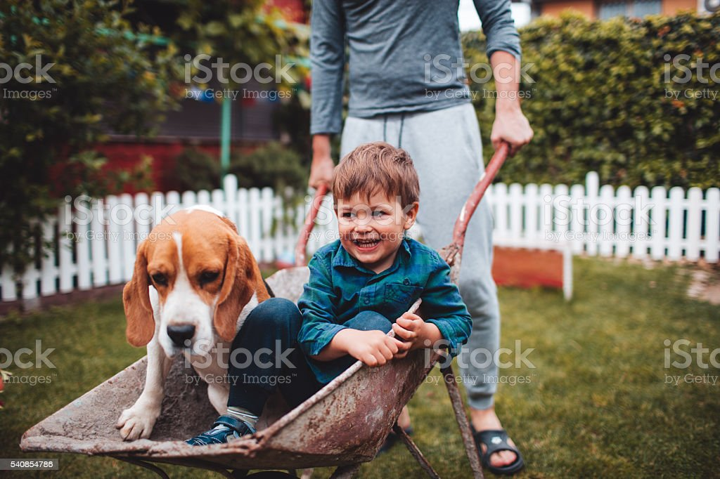 Boys having fun stock photo