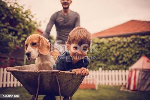 Photo of little smiling boy, his dad and dog having fun outdoors. Dad is driving them in a wheelbarrow.