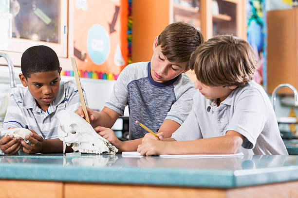 Boys in science class stock photo