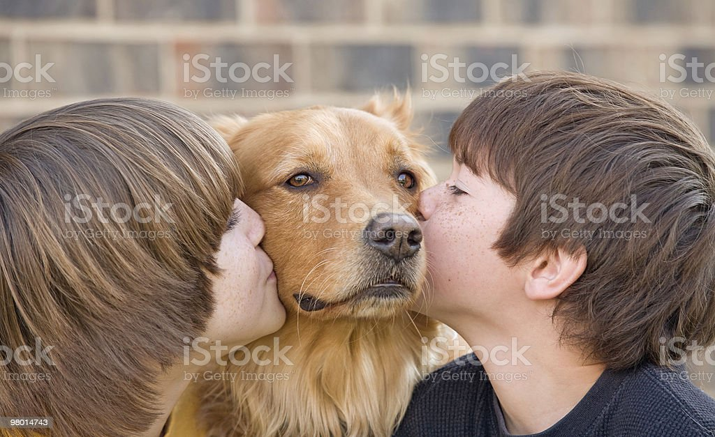 Boys Kissing a Dog royalty-free stock photo