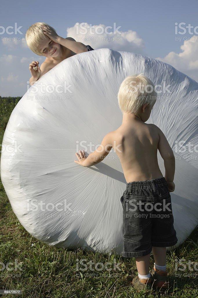 Boys on the meadows royalty-free stock photo