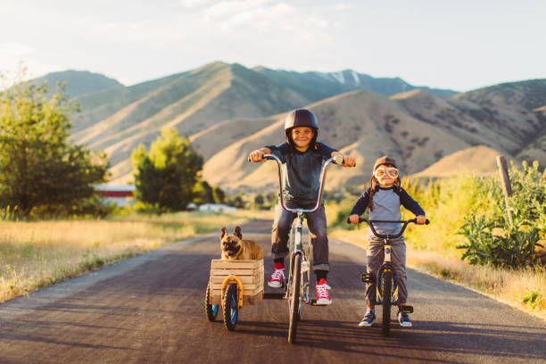 Boys Riding Bicycles with Dog in Side Car stock photo