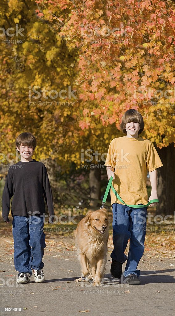 Boys Walking the Dog royalty-free stock photo
