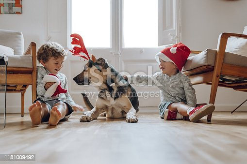 istock Boys wearing chritmas hats playing with dogs 1181009492