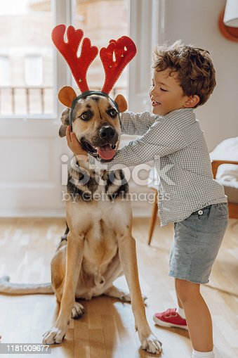 istock Boys wearing chritmas hats playing with dogs 1181009677