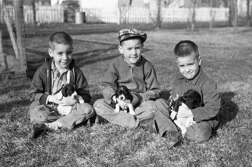 Three brothers with puppies. Waterloo, Iowa, USA. Spring 1959. Scanned film with grain.