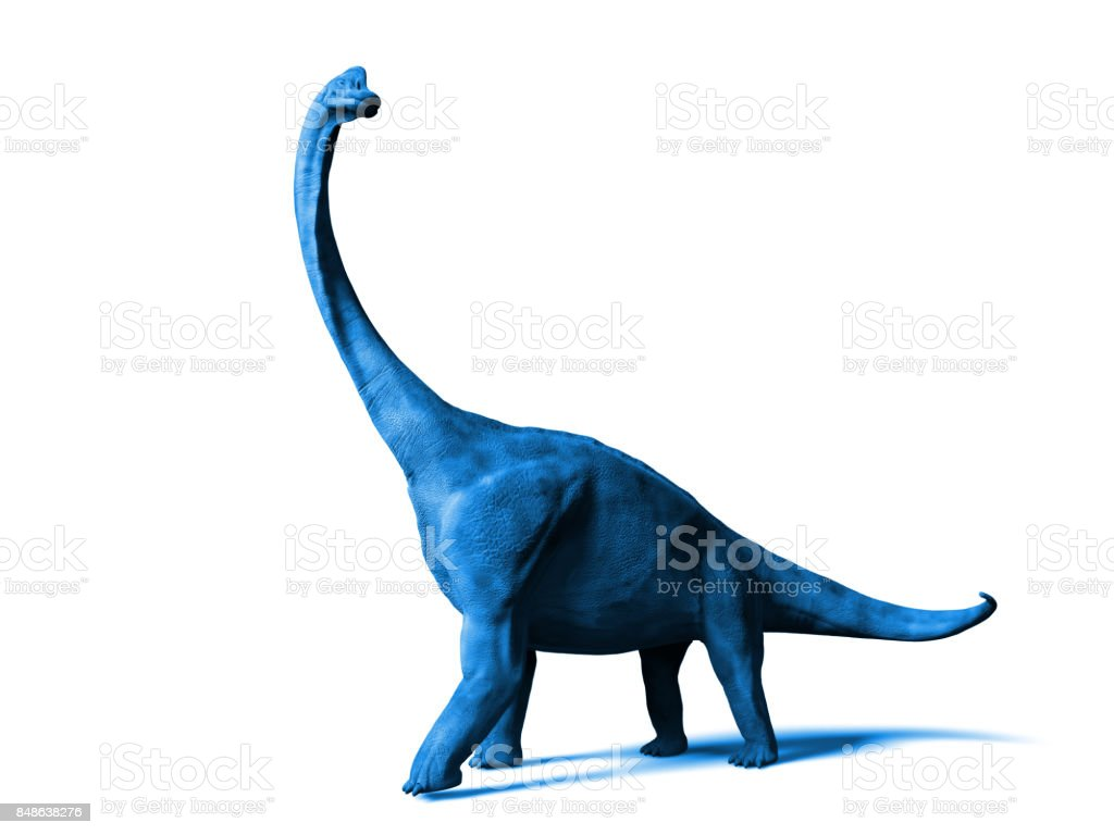 Brachiosaurus altithorax from the Late Jurassic isolated on white background stock photo