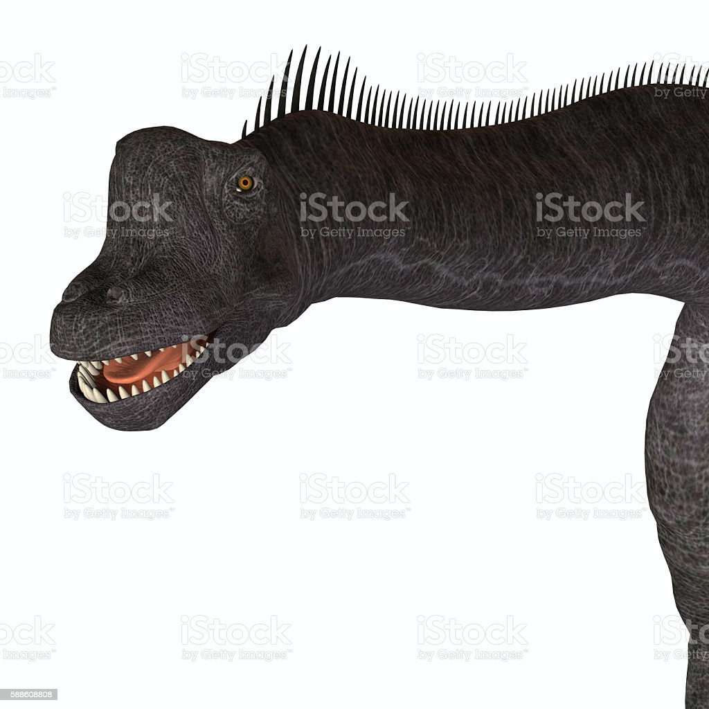 Brachiosaurus Animal Head stock photo