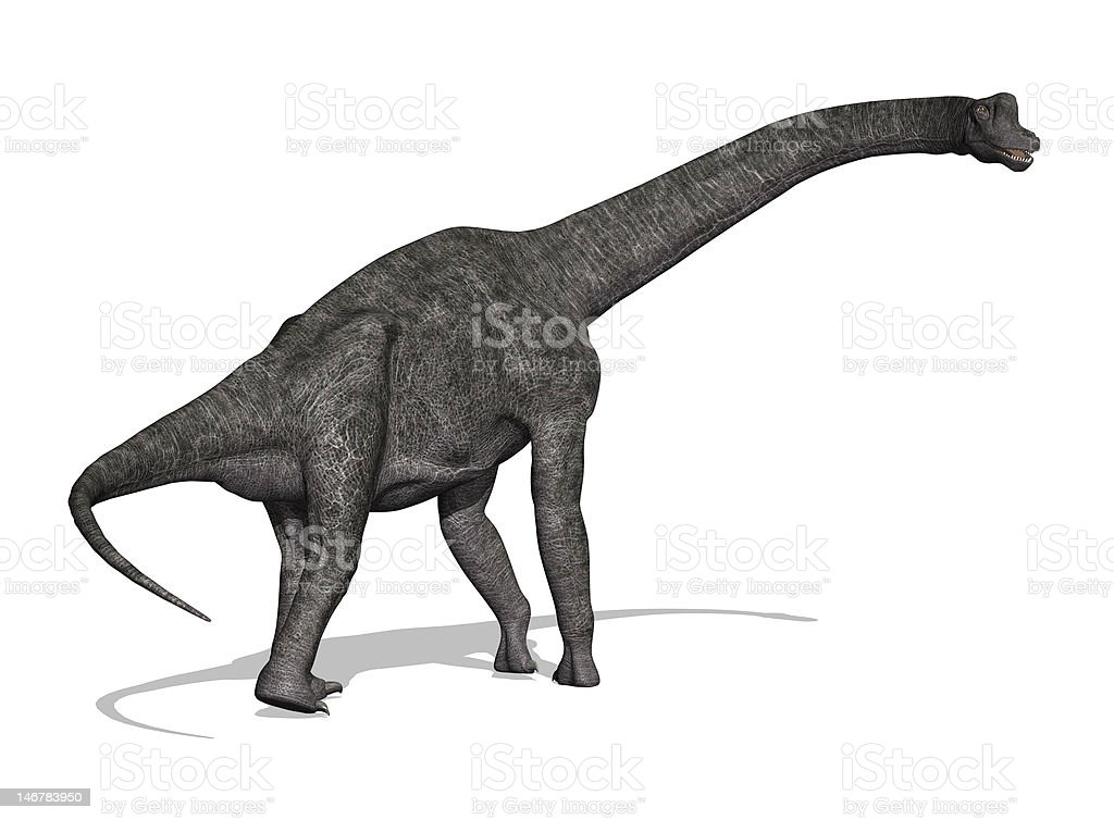 Brachiosaurus Dinosaur stock photo