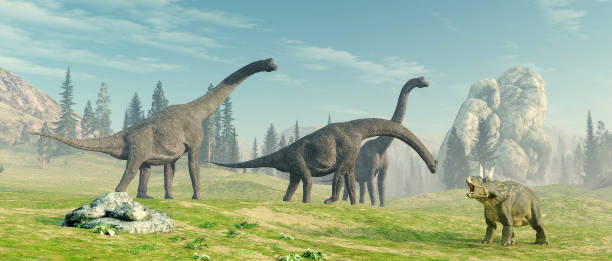 Brachiosaurus species in the nature . This is a 3d render illustration. stock photo