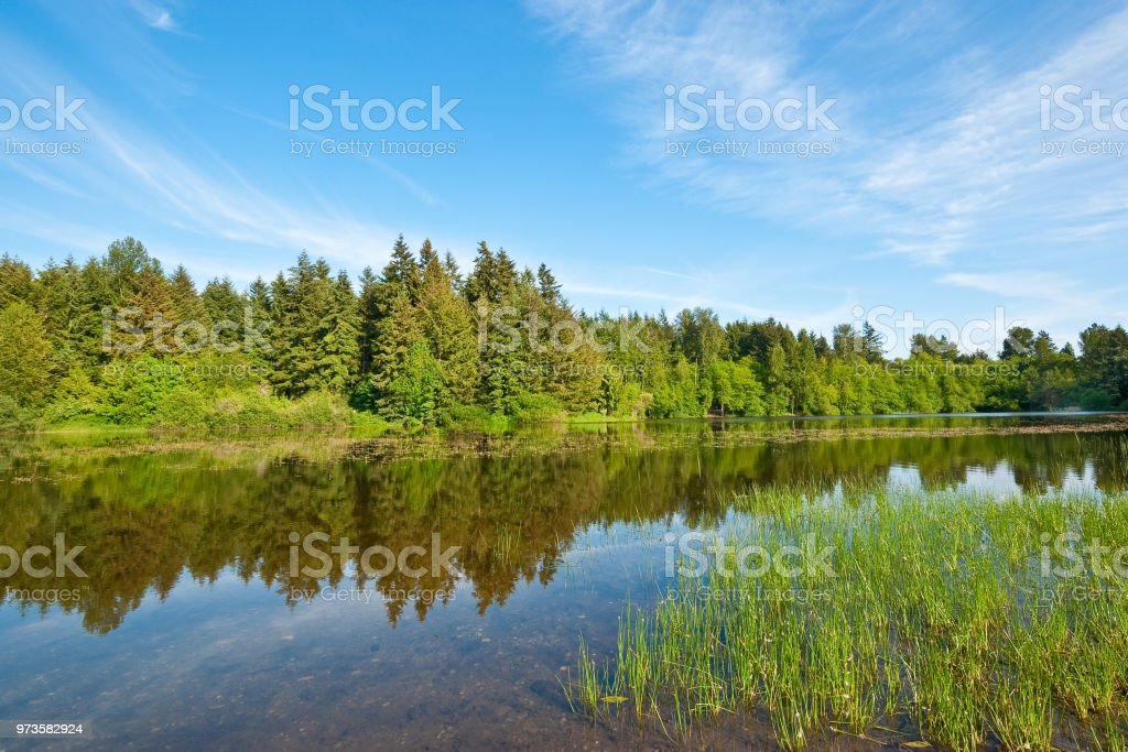 Bradley Lake Evening stock photo