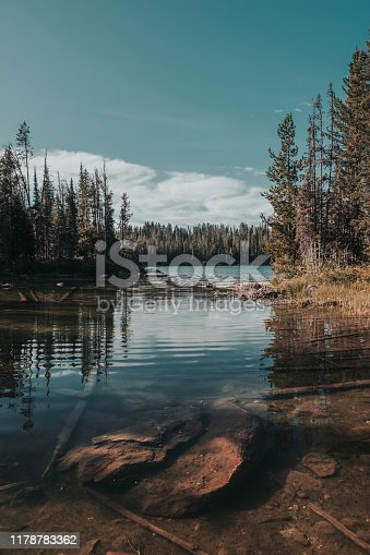 Beautiful lake water reflections on Bradley Lake in Grand Teton National Park, Wyoming, USA. Rocks and logs displayed underwater. Surrounded by pine trees. Bright sunny day.
