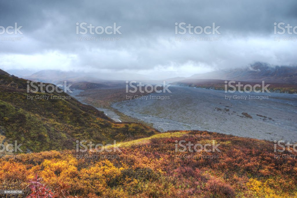 A braided river and ripe Blueberry Bushes under stormy skies in Denali National Park. stock photo