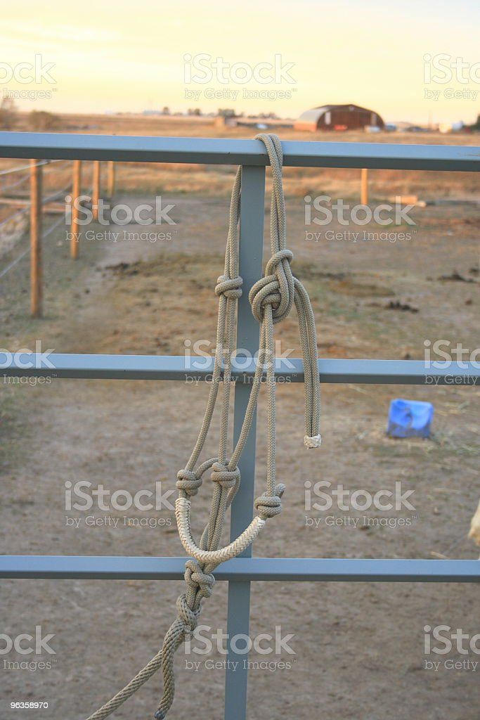 braided rope halter on the fence royalty-free stock photo