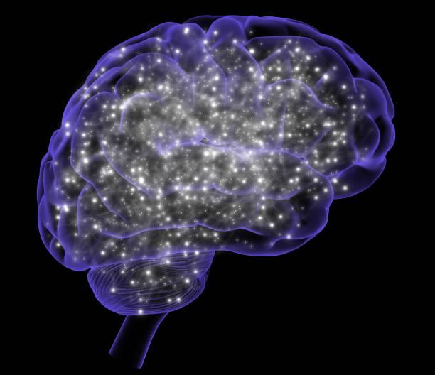Aktivität des Gehirns. – Foto