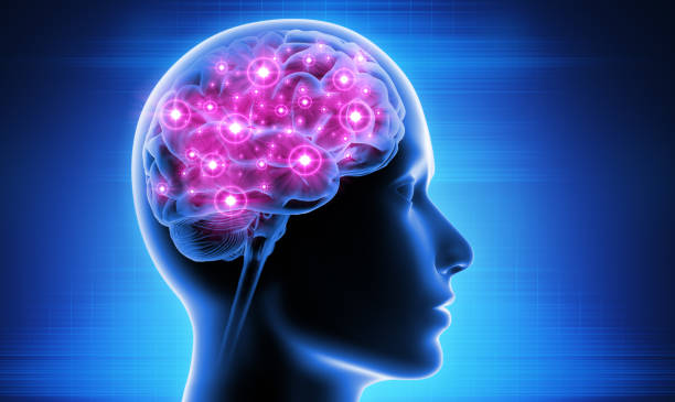 Brain Activity Human Head with Brain Activity neurotransmitter stock pictures, royalty-free photos & images