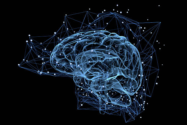 Brain activity stock photo
