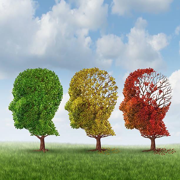 Brain Aging stock photo