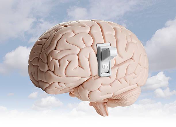 cerveau de puissance - commutateur photos et images de collection