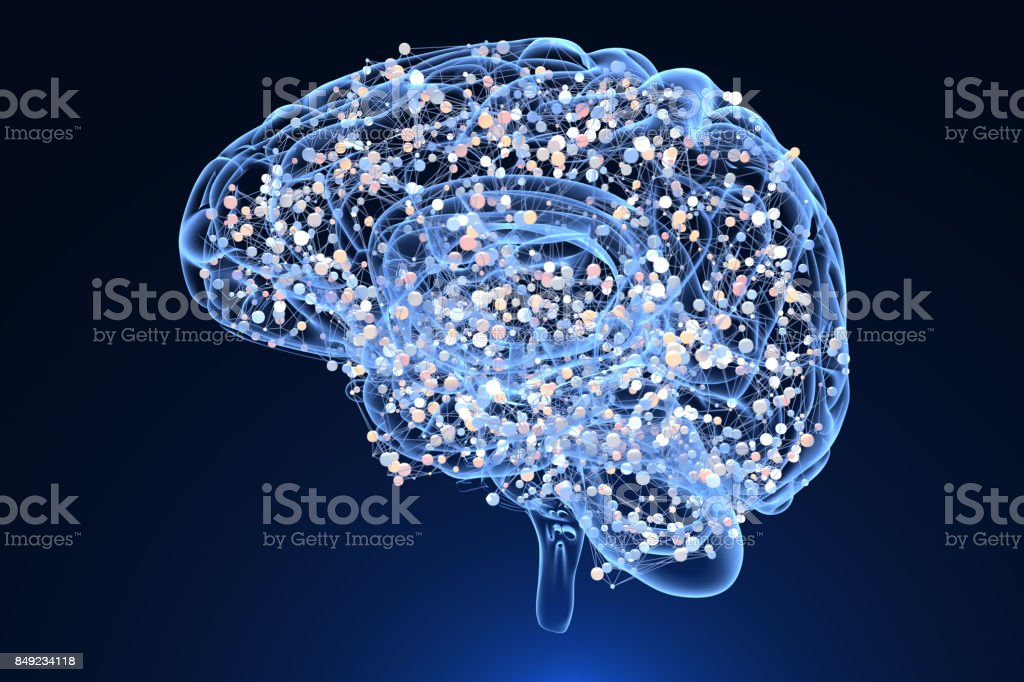 Brain and centers of an activity stock photo